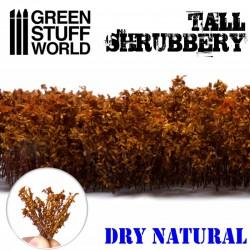 GreenStuffWorld - Grands Arbustes - Violet Automnal