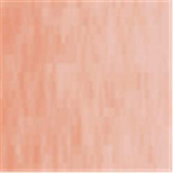 Prince August CLASSIC : Orange Transparent